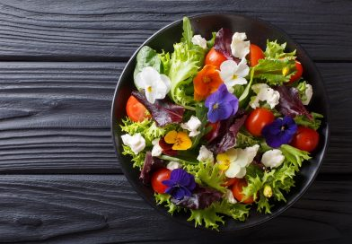 Can Wild Lettuce Help with Pain